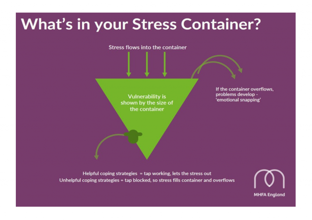 The stress container | Waves Wellbeing